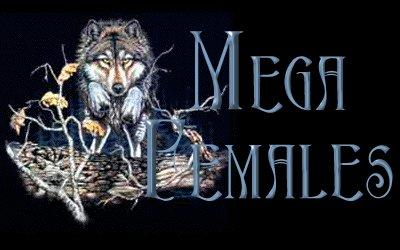 WolfLungehead.jpg - 24945 Bytes